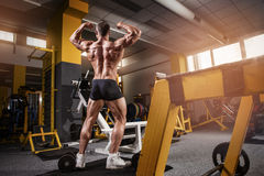 Strong Athletic Man Fitness Model Torso showing back muscles Stock Photography