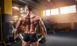Strong Athletic Man Fitness Model Torso showing back muscles Royalty Free Stock Images