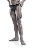 Strong Athletic Man Fitness Model Torso showing legs Stock Photo