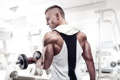Fitness Model posing back muscles, triceps, latissimus stock photos