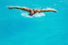 Strong athletic man swimming butterfly style in the pool Royalty Free Stock Images