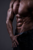 Strong athletic man torso Stock Photos