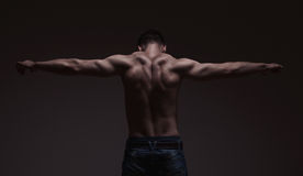 Strong athletic mans back on dark background Stock Image