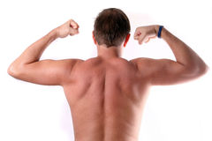 Strong back. A young man is flexing his muscles on his arms and his back Royalty Free Stock Photo