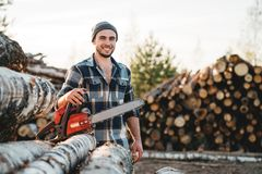 Strong bearded lumberjack wearing plaid shirt hold chainsaw in hand on background of sawmill. And warehouse of trees royalty free stock photos