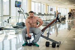 Strong bearded man in gym. Stock Photos