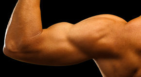 Strong biceps Royalty Free Stock Image