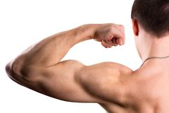 Strong biceps. On a white background royalty free stock images