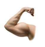 Strong biceps isolated Stock Image
