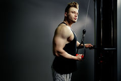 Strong bodybuilder athlete works out and pushing trainer Stock Images