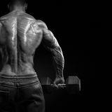 Strong bodybuilder doing exercises with dumbbells turned back Royalty Free Stock Photo