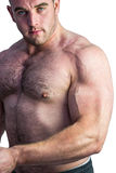 Strong bodybuilder flexing his bicep Royalty Free Stock Image