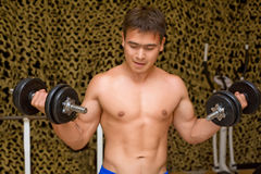 Strong bodybuilder training muscles in gym Stock Photos