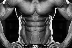 Strong Bodybuilder With Six Pack Stock Photography