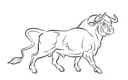 Strong bull. On a white background Stock Photo