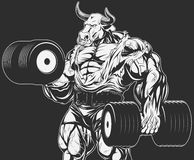 Strong bull with dumbbells. Vector illustration, strong bull doing exercise with dumbbells for biceps Stock Image