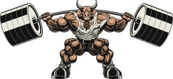 Strong bull. Vector illustration, strong ferocious bull holds the barbell on your shoulders Royalty Free Stock Photos