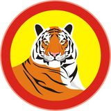 Strong and calm tiger Royalty Free Stock Images