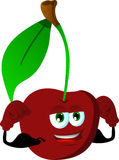 Strong cherry Royalty Free Stock Photos