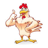 Strong Chicken. Cartoon chicken a strong and gallant was smiling thumbs-up Royalty Free Stock Photos