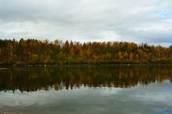 Strong colourful autumn forest with reflection on river. Surface Royalty Free Stock Photography