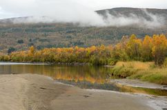 Strong colourful autumn forest with reflection on river. Surface Stock Images
