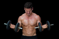 Strong crossfitter lifting up heavy black dumbbells Royalty Free Stock Images