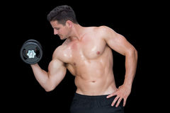 Strong crossfitter lifting up heavy dumbbell Royalty Free Stock Images
