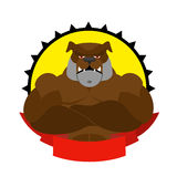 Strong dog. Logo for Sports Club. Bulldog with big muscles. Logo Stock Photo