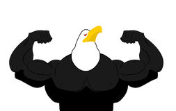 Strong Eagle athlete. fitness bird. Wild animal bodybuilder with. Huge muscles. Bodybuilder with beak. Sports team mascot royalty free illustration