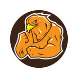 Strong eagle logo. Hawk fighter. Falcon bodybuilder Stock Images