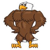 Strong eagle posing 2. Illustration of the strong eagle standing and posing. White background vector illustration