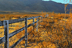 Strong Fences Make Good Neighbors Royalty Free Stock Images