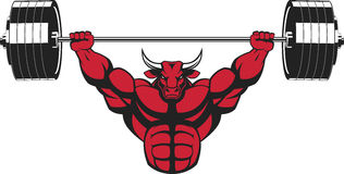 Strong ferocious bull. Vector illustration, strong ferocious bull performs an exercise with a barbell over his head Stock Image