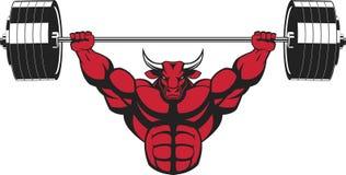 Strong ferocious bull Stock Image