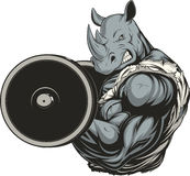 Strong ferocious rhino. Vector illustration of a ferocious rhino raises the barbell on biceps Stock Images