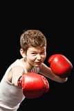 Strong fighter Royalty Free Stock Photography