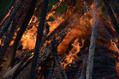 Strong fire flames Stock Photography