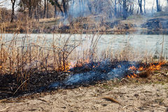 Strong fire in the forest on the lake. A lot of smoke on the bac Royalty Free Stock Image