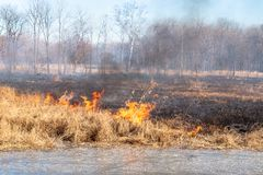 A strong fire spreads in gusts of wind through dry grass stock photography