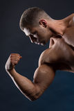 Strong fit man demonstrating his powerful muscles. Handsome powerful man demonstrating his strong body Royalty Free Stock Images