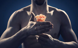 Strong and fit man holding a rose. Strong and fit man holding an orange rose royalty free stock images