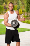Strong and fit. Royalty Free Stock Photo