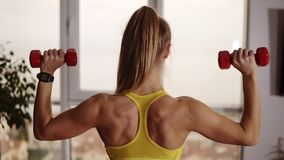 Strong fitness woman lifting dumbbells while doing biceps exercises, enjoying training. Pretty athletic female making stock footage