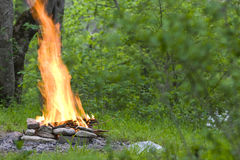 Strong flame of camp-fire Royalty Free Stock Photography