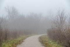Strong fog. Stock Photography