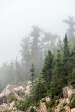 Strong fog. Stock Photos