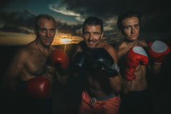 Strong friends. Intense tough buff strong partners weight training friends serious expression fighters  at sunset Royalty Free Stock Photo