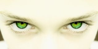 Strong green eyes Royalty Free Stock Image