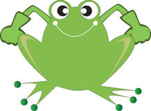 Strong Green Frog Stock Photography